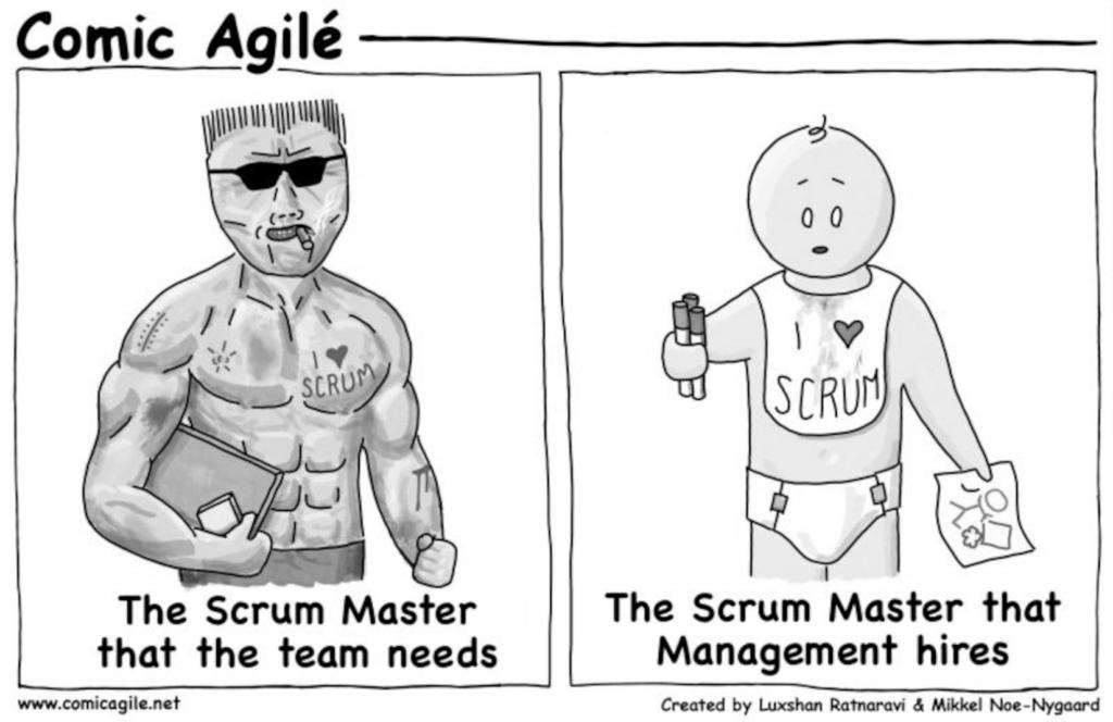 Scrum Master Comic